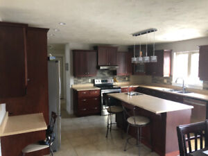 Countertops (Laminate) - great condition incl sinks