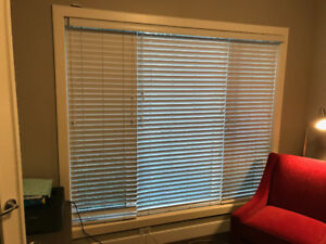 Windown Blinds