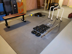 Home gym buy or sell exercise equipment in edmonton kijiji
