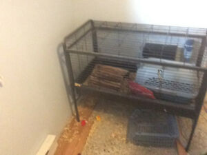 Bunny cage,hide,carrier,water bottle, food dishs an bedding