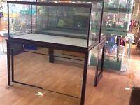New aquarium on stand