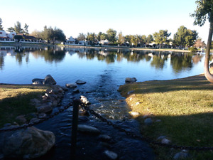 Beautiful Phoenix Lakeside Vacation Rental