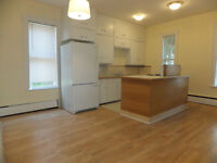 Large 2 BR in Town