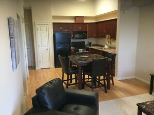 Fully furnished 2bed 1bath Condo available Jan 1st in Ft Sask
