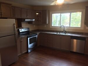 3 bedroom apartment all inclusive w laundry
