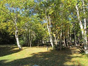 Magnifique terrain a vendre à Tadoussac Saguenay Saguenay-Lac-Saint-Jean image 1