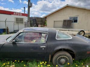 1981 Pontiac Firebird Coupe (2 door)