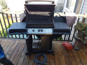 Outdoor Natural Gas BBQ