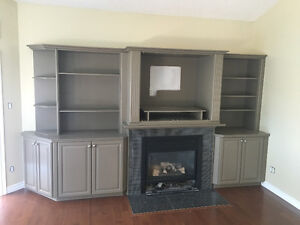Gas Fireplace and Wall Unit