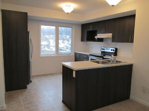 Brand New Executive Town House 3 bedrooms in Orleans