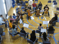 Openings for Strings and Voices!!