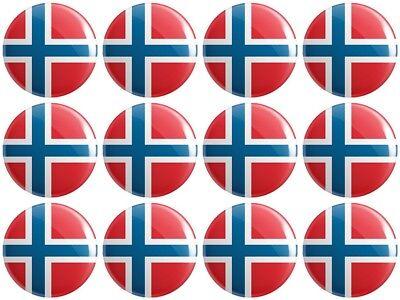 12 x Svalbard and Jan Mayen Flag BUTTON PIN BADGES 25mm 1 INCH