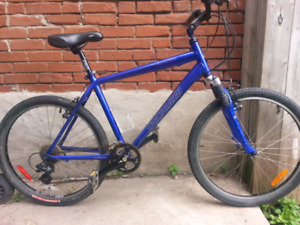 Specialized Expedition (Hybrid)