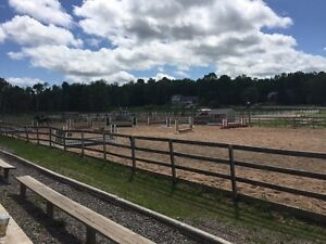 Part-time evening job at local horse facility