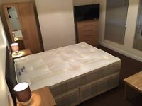 Stunning Large Double Room available for immediate move / St.Albans - WATFORD - £150/WEEK