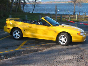 '95 Mustang GT for sale