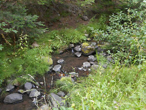 Placer gold claim on Blakeburn creek (Tulameen)