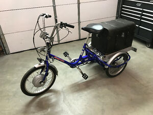 Easy-Go Electric Tricycle