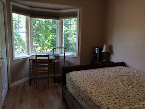 Large bright room for mature student/young professional from Jan Kingston Kingston Area image 4