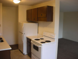 QUIET Top Flr 2 Bedroom: $925 + power, near 8th Street Moose Jaw Regina Area image 5