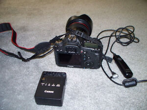 Canon EOS 6D digital CAMERA with lens Stratford Kitchener Area image 4
