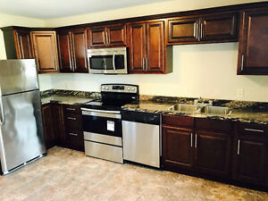 LARGE DELUXE NEW 2 BEDROOM APT CLOSE TO DOWNTOWN CH'TOWN