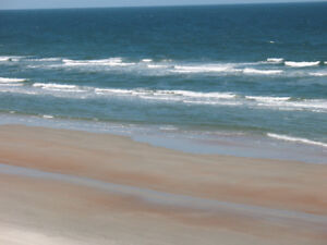 Daytona Beach Shores (Get 10% discount from owner for July)
