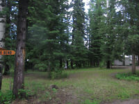 Bergen Springs Recreational Lot