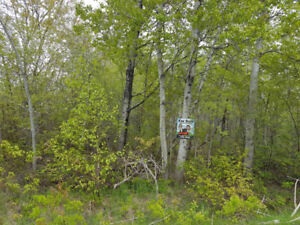 PRIVATE WATERFRONT LOT!