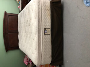 Seally Posterpedic Matress especial comfort 16 inch