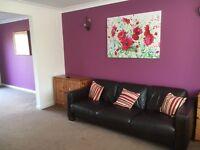 Single Room in shared house in Little Stoke