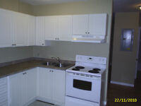 Spacious Two Bedroom In Paris Ont. Available August 1st.