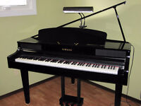 Piano and theory