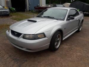 Mustang GT.   Low Km's,  Must go