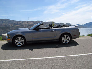 2007 Ford Mustang GT (Appearance Pkg) Convertible