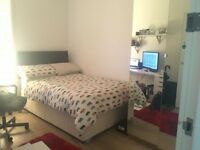 Double room for rent in August, central Dundee