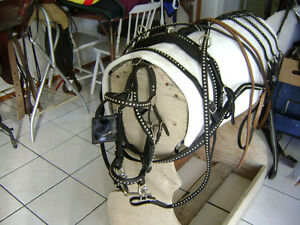 PONY BLACK SINGLE SHOW HARNESS