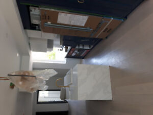 Kitchen refinishing or new solid wood kitchen on budget