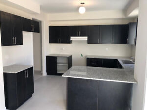 Kitchen cabinets, sink and faucet -NO GRANITE