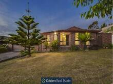 Buyers over $465,000 Endeavour Hills Casey Area Preview