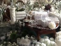 BEAUTIFUL WEDDING/ SPECIAL EVENT DECOR
