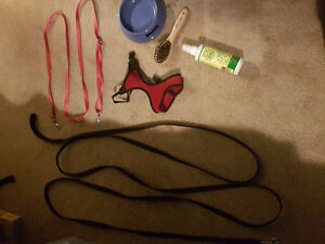 Dog leashes, bowl, brush, harness and apple bitter - $75 OBO