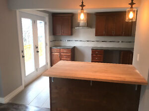 **BEAUTIFUL FULLY RENOVATED 2 BEDROOM HOUSE** (HEAT&LIGHTS INCL)