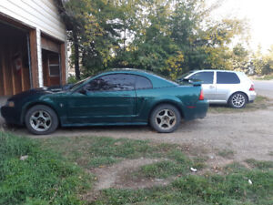 Sask plated 2003 Ford mustang