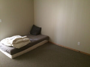 Roommate needed at Morden
