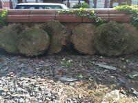 Concrete garden stepping stones