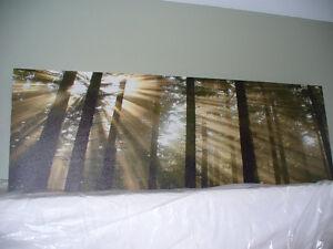 Cadre rectangulaire Modèle Forêt