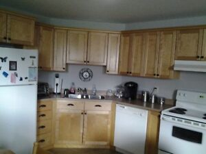 Moncton North, all incl. 2 br in private home, private entrance