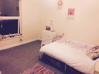 Fantastic large room to rent in friendly and social house