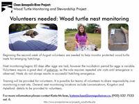 Wood turtle nest monitoring volunteers needed